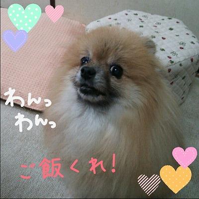s-IMG_20141011181636.jpg