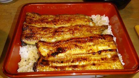 神田満寿屋の鰻重