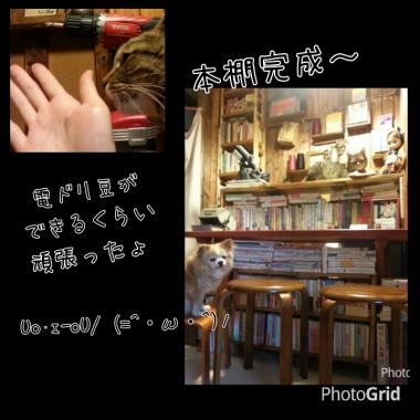 PhotoGrid_1409733698272.jpg