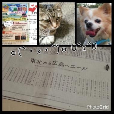 PhotoGrid_1410773533181.jpg