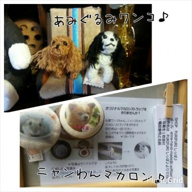 PhotoGrid_1411096188838.jpg