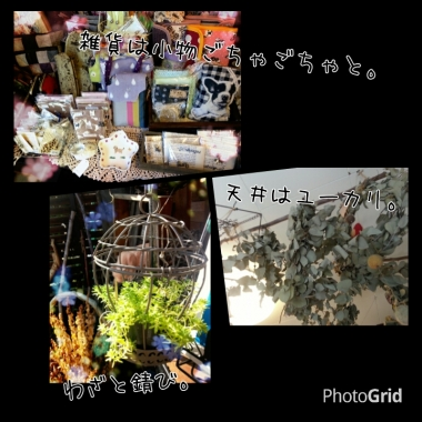 PhotoGrid_1412315620647.jpg