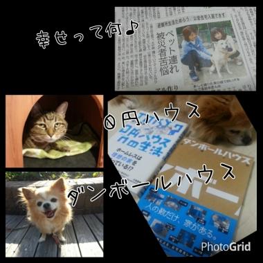 PhotoGrid_1412512447072.jpg