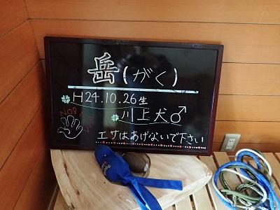 2014083107.jpg