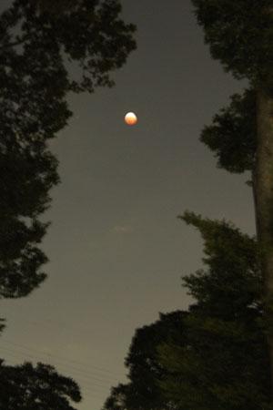 皆既月食1081