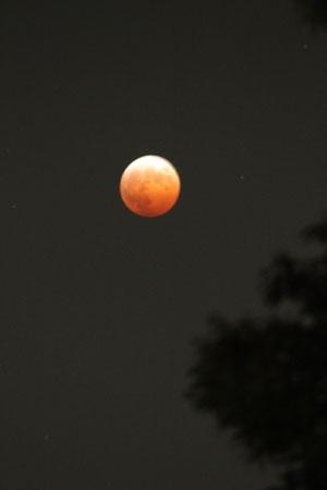 皆既月食1082