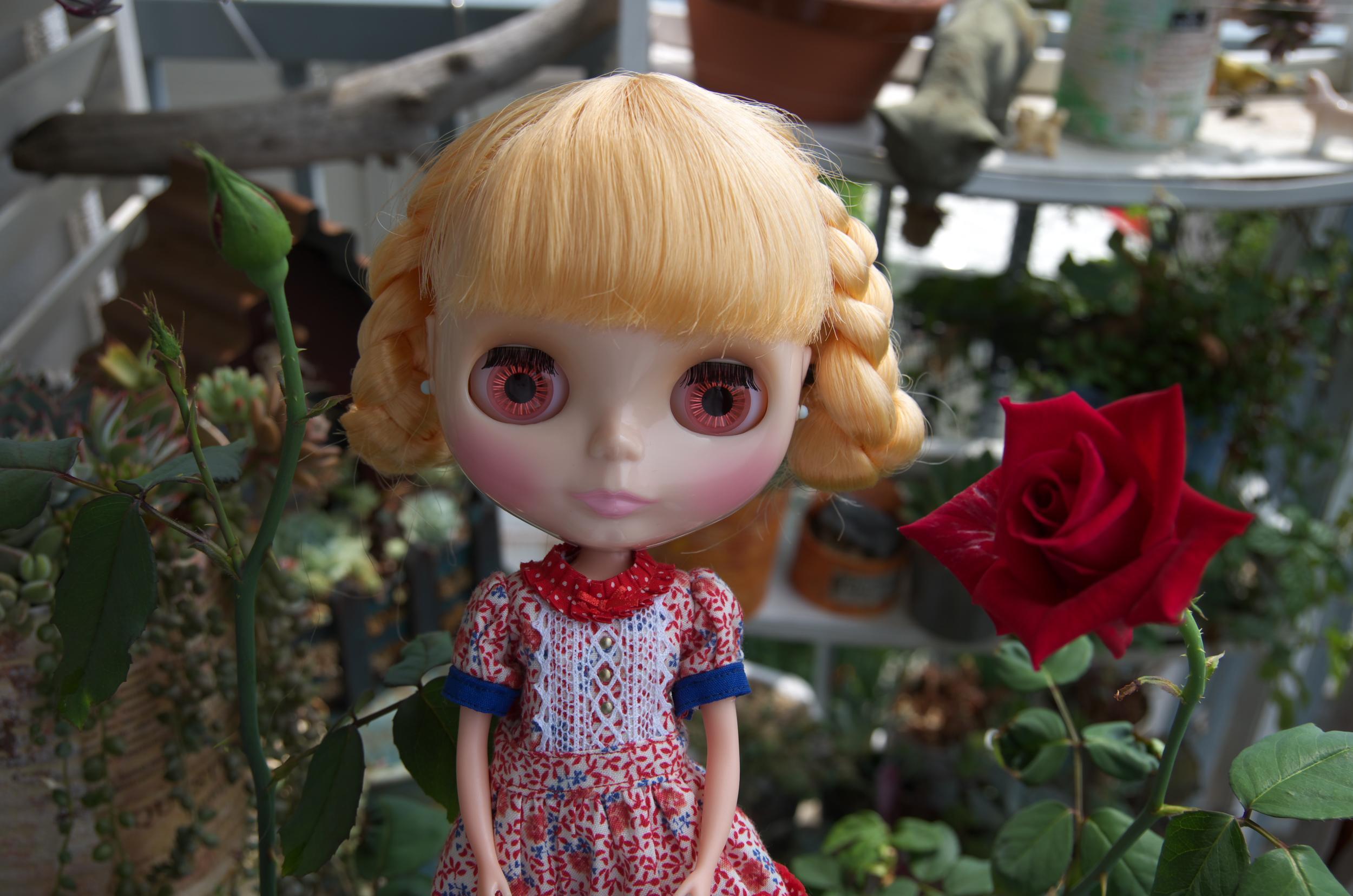 薔薇201407b