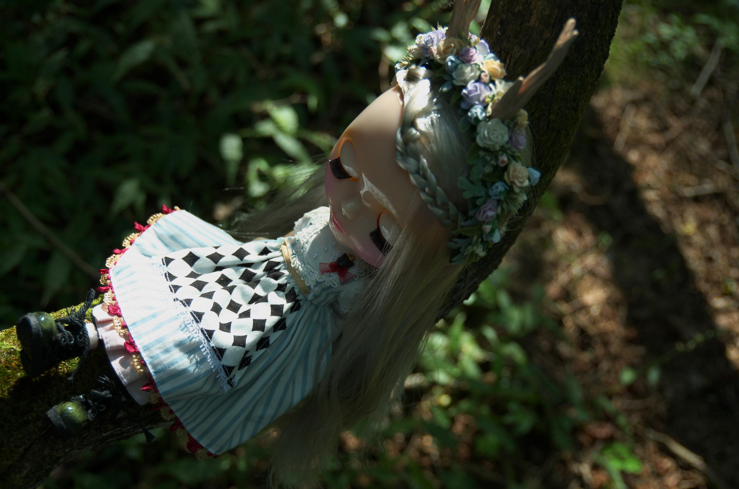 きのこの森10