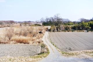 荒川河川敷 (1)