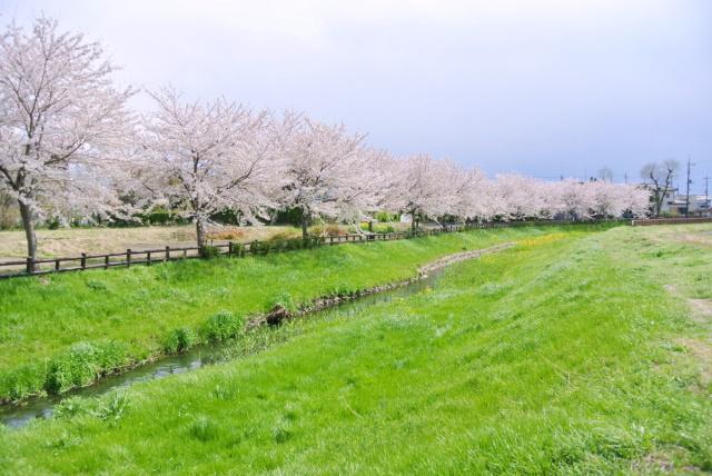 元荒川 (2)