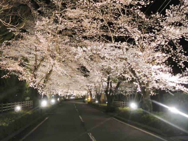 長瀞町 (1)