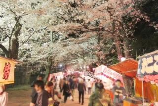 赤城の春 (2)