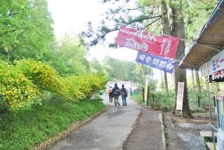 羊山公園 (12)
