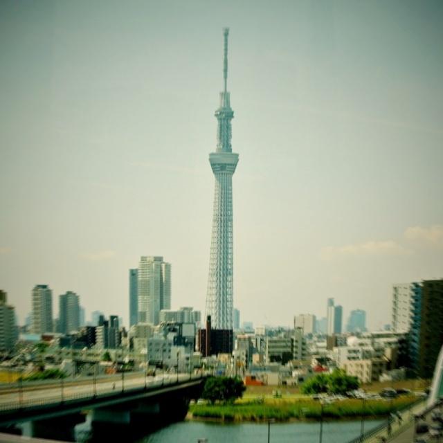 東京スカイツリー (3)
