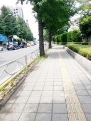 中華そば ふくみみ (1)