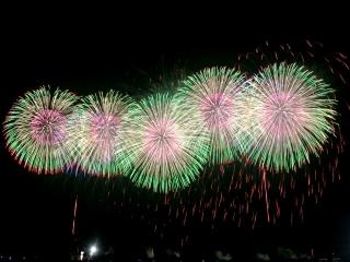 こうのす花火大会 2014 (19)