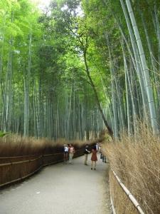 竹林の小道2