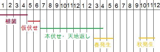 発生カレンダー