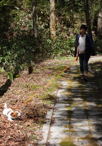 2014-05-03~05 森きち 25
