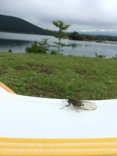 田貫湖2014-08-03~04  007