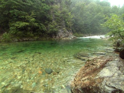2013-08-14~16 森きち08