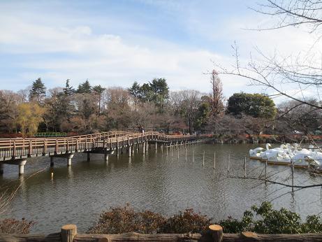 井の頭公園池140228