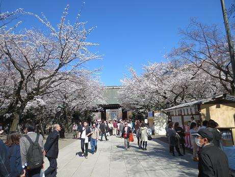 桜靖国神社140331