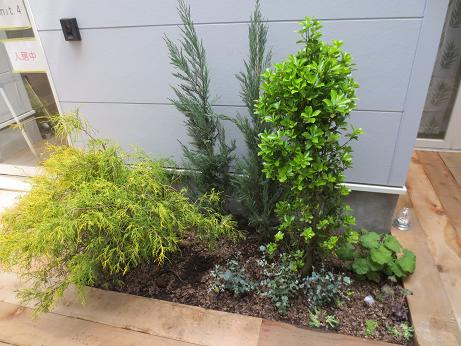 府中アパート中庭植栽