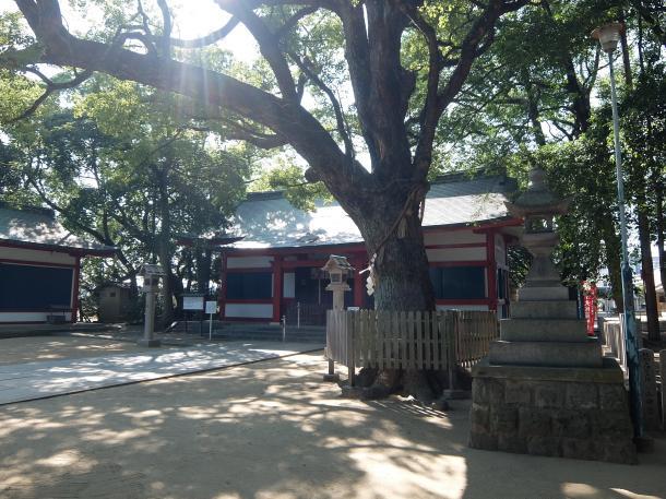大依羅神社