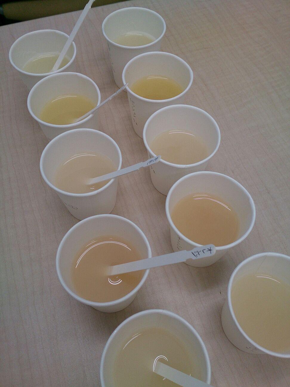 フルーツ甘酒開発中