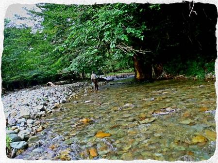 2014 那珂川水系11 (4)