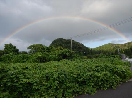 平成26年7月28日の虹