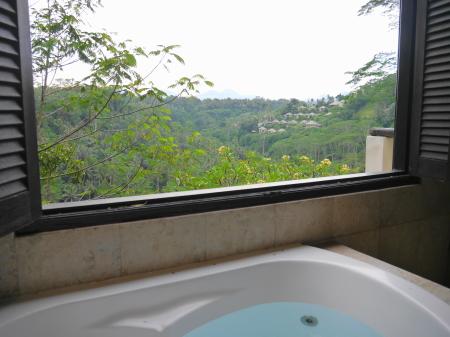 プリブンガ バスルームからの眺め