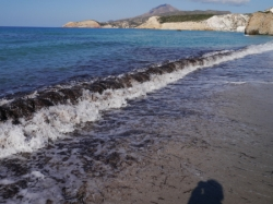 海藻の海フィリプラカビーチ