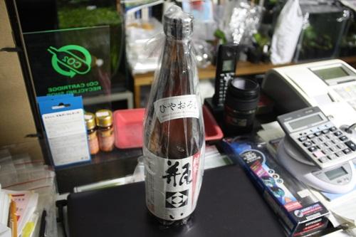 日本酒キター!! 東海 岐阜 熱帯魚 水草 観葉植物販売 Grow aquarium