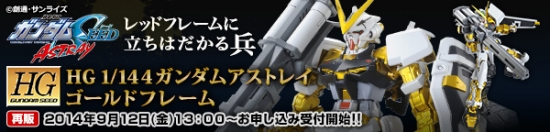 HG ガンダムアストレイゴールドフレーム 【再販】b