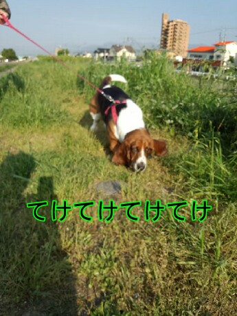 picsay-1399549638.jpg