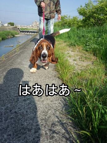 picsay-1399549888.jpg