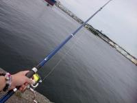 [海釣] 3.5次元OFF 大潮