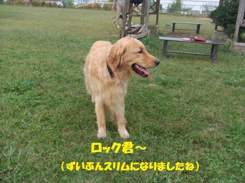 009_convert_20141014020927.jpg