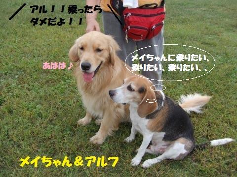 014_convert_20141014015100.jpg