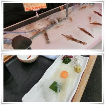 函館4 (800x800)