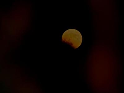 皆既月食  Hana days 2014 10・9