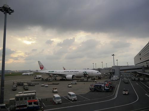 s-P1290101.jpg
