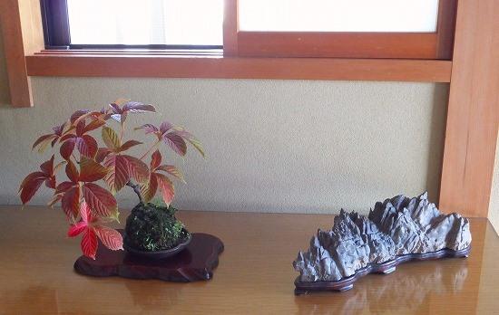 峨眉山蔦・石H26年9月①