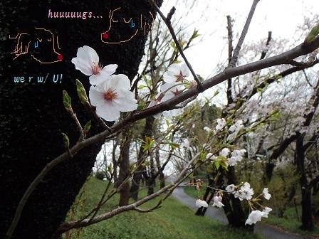 2014-04-04 04APR14 YATOYAMA 010SHS