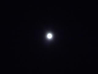 P1130676 十五夜5