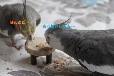 全部食べられちゃう!