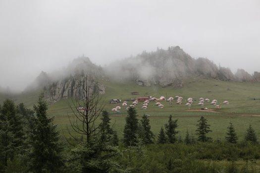 霧のゲルキャンプ