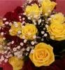 happy.rose